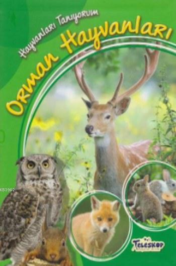 Hayvanları Tanıyorum Orman Hayvanları